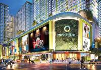 Duy nhất 2 căn giá rẻ, 2PN 70m2/7tr/th, 3PN 85m2/8,5tr/th, tại Topaz City + Elite, 0906300073