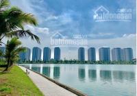 Chính chủ cần bán 2 lô biệt thự view hồ Thanh Hà Cienco 5, giá cắt lỗ