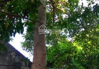 Bán 154m2 đất sổ đỏ Đại Lộ Thăng Long, Xã Vân Côn, Hoài Đức, Hà Nội