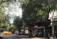 Bán nhà Nguyễn Văn Luông Quận 6, diện tích 16 x 30 góc 2 mặt tiền giá rẻ bất ngờ