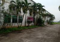 Bán đất nhà xưởng tại Cụm CN Tân Quang, Văn Lâm, Hưng Yên. Lô góc 2 MT, dt 50.000m2