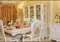 Cho thuê thuê biệt thự Splendora - 330m2 - 390m2, đủ đồ và đồ cơ bản, giá 17 tr/th. Để ở hoặc CTY