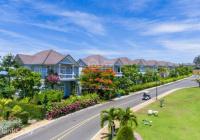 Cho thuê căn hộ Ocean Vista 1, 2, 3PN, Villa khu Sea Links City