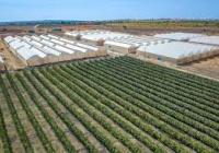 Đất trang trại Bình Thuận - chỉ 50 triệu/1.000m2 - hotline: 079 89 99 236