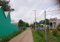 Cần bán đất cách Quốc Lộ 20 chỉ 300m, DT 1100m2, đất đã quy hoạch đất ở 1000m, giá 1,65 tỷ