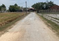 Đất ngộp cần chia tay (24mx40m) tại ấp Bình Phú, xã Phước Bình, Trảng Bàng. Giá 52 triệu mét ngang