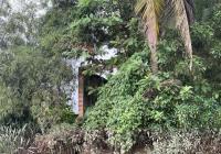 Bán đất lớn đường Phạm Thái Bường, Nhơn Trạch, Đồng Nai