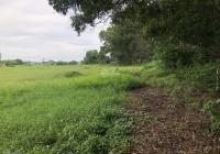 Cần bán gấp 2 lô đất liền kề trên đường Võ Thị Sáu, Long Điền, BR - VT, có sổ đỏ, Thổ cư, 2663.9m2