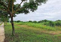 Đất chuyển nhượng 50.000m2 góc ba mặt tiền trong khu công nghiệp Protrade, tỉnh Bình Dương