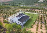 Cam kết 100% đất farm giá rẻ thanh lý từ Agribank view biển - 89.000đ/m2, LH: 0934458789