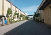 Cho thuê kho, xưởng mới 100% khu CN Văn Giang, Hưng Yên DT 200m2 đến 100.000m2