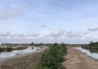 Bán đất giá rẻ xã Lý Nhơn, Cần Giờ, TPHCM diện tích: 11ha. Giá bán 500k/m², đất nuôi thuỷ sản