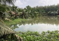 Chính chủ cần bán đất vườn cây ăn trái, hồ cá chỉ 2tr/m2 ~ 4345m2. LH 0943976139