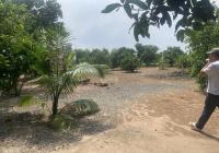 Bán đất mặt tiền Tỉnh Lộ 15, (63.85 x 100 = 6.520m2) Xã Phú Hoà Đông, Củ Chi, TPHCM
