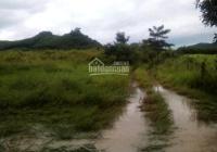 Bán 12 ha đất Ninh Tân, Ninh Hòa đã có sổ phù hợp làm trang trại, điện mặt trời