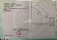 Chính chủ kẹt tiền cần bán gấp lô Biên Hòa New City hướng Đông Nam ngay sân golf sổ đỏ, 0908207092