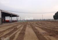 Chính chủ cho thuê mặt bằng hoặc nhà xưởng 3000 - 5000m2 tại QL37 cụm CN Ninh Giang, Hải Dương