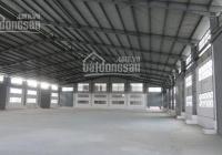 Cho thuê kho xưởng 650m2 Hương Lộ 2, Q. Bình Tân, giá thuê 40tr/tháng, xin LH: 0966.900.650