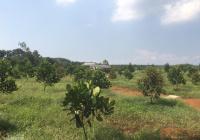 Cần bán lô đất đẹp bằng phẳng 10000m2(1ha), đường xe hơi tới đất, cách Quốc Lộ 20 2km, chỉ 2.45 tỷ