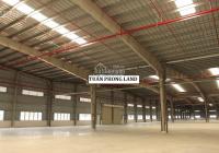 Công ty cần cho thuê xưởng giao ngay trong KCN Vinatex - Tân Tạo, huyện Nhơn Trạch, tỉnh Đồng Nai