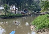 Bán đất (ốc đảo) đường nhựa, 9000m2 (cây lâu năm) phường Tân Định, Bến Cát, Bình Dương