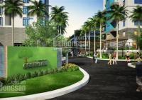 Bán đất nền KDC 13C Greenlife, DT 270m2 giá 39 triệu/m2 vị trí đẹp. LH 0902462566