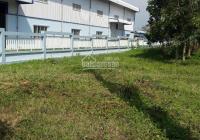 Bán nhà xưởng trong khu CN Nhựt Chánh, MT đường 832, Bến Lức, Long An, 5027m2, giá 42 tỷ TL