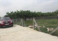 Bán 500m2 đất vườn xã Mỹ Lộc - giáp Bình Chánh, SHR, đường xe hơi giá: 1,6 tỷ