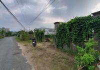 Bán 582m2 đất thổ cư mặt tiền đường Cộng Đồng Lộc Trung, xã Mỹ Lộc, Huyện Cần Giuộc, Long An