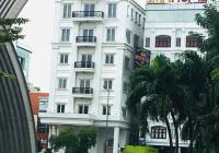 Cho thuê nguyên tòa nhà cấp 5 sao gần sân bay Tân Sơn Nhất đường Trường Sơn, P2, Tân Bình