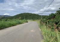 Bán gấp 4,2 sào 4200m2 suối lớn ôm theo đất đường B'Lao Xê Rê, TP. Bảo Lộc