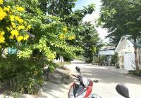 Chính chủ bán gấp nhà gần biển Bình Sơn, đường Nguyễn Thị Minh Khai, Phan Rang Ninh Thuận giá rẻ