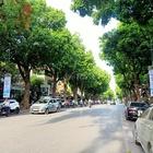 Cho thuê nhà tầng 2 mặt phố Trần Hưng Đạo, Hoàn Kiếm, Hà Nội, diện tích 200m2 - mặt tiền 7,3m