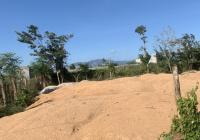 Bán gấp 2 lô đất thổ cư ngay UBND xã Hòa Khánh Đông, giá 450tr, DT 220m2