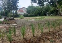 Chính chủ cần bán gấp 3 lô đất tại Hòa Vang đang có dự án mở ra quốc lộ, giá 6tr/m2. LH: 0944102415