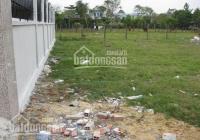 Đất bán cạnh THCS Chánh Nghĩa MTĐ Bùi Quốc Khánh, Thủ Dầu Một 100m2 SHR. 0902704464 Nhi