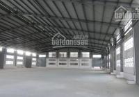 Cho thuê kho xưởng 1000m2 mặt tiền đường Kênh Tân Hoá, Phường 3, Quận 11