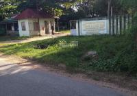 Bán 1ha đất cây trồng MT đường nhựa gần Trung Thành Nam, xã Hàm Liêm, Hàm Thuận Bắc, giá 4 tỷ 6