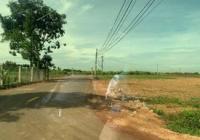 Bán đất sào cho nhà đầu tư Trảng Bom, đường nhựa, ngay khu dân cư