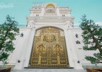 Thanh lý TS, cần bán gấp siêu biệt thự cực đẹp góc 2MT đường 30m ngay Đảo Kim Cương 22x24m, T-6 lầu