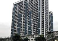 Bán căn hộ penthouse diện tích 565m2, có bể bơi riêng, giá 17.5 triệu/m2. LH: 0984 673 788