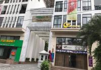 Bán biệt thự Villa cao cấp số 25/6 Vũ Ngọc Phan, 160m2 x 6 tầng