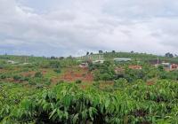 Đất thị trấn Nam Ban, 5200m2, QH full thổ cư, giá 820 tr/1000m2