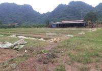 Bán nhanh lô đất SXKD tại xã Thanh Nông, huyện Lạc Thủy, Hòa Bình