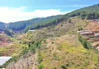 Bán quả đồi nhỏ 1,9 ha rừng thông bao quanh An Sơn, Phường 4, Đà Lạt