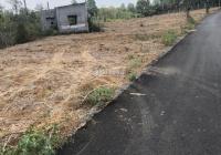 Cần vốn kinh doanh nên bán 4 sào, đất 2 mặt tiền đường nhựa sát sân bay Long Thành
