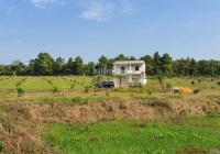 Bán 2.03 hecta Xã Xà Bang, Châu Đức, 300m2 thổ cư, có nhà, có vườn cây, LH 0932004566