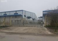 Mùa dịch, bán cắt lỗ nhà xưởng đủ pháp lý tại Cẩm Giàng Hải Dương giá rẻ Mrs. Bình ĐT: 0916.380.367