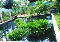 Nhà vườn nghỉ dưỡng An Sơn 2369m2, giá 15 tỷ, liên hệ 0878 048 048
