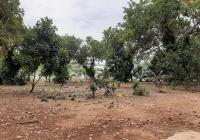 Cần bán 1 mẫu đất view hồ làm nghỉ dưỡng Xuân Tâm, Xuân Lộc, Đồng Nai